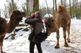 Benefz-für-Hospiz_Tierpark-Eberswalde-02.JPG