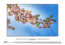 rund-UM-photo_Kalender-Hirntumorhilfe-2018-05