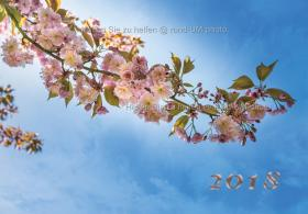 rund-UM-photo_Kalender-Hirntumorhilfe-2018-01