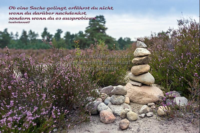 041-Heide-Steine