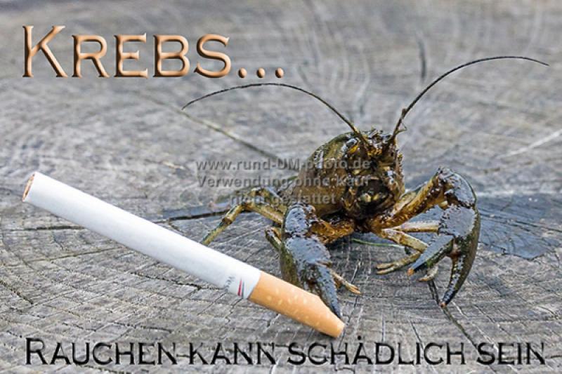 018_Rauchen_Krebs